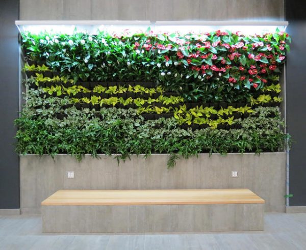 DIRTT's Breathe Living Wall creates nature inspired office space
